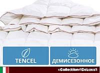 Одеяло антиалергенное Tencel Деми DeLuxe 351