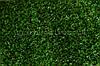 Искусственная трава ССGrass YP 7 мм