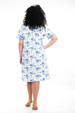 Женская нарядная рубашка 2230-1, фото 2