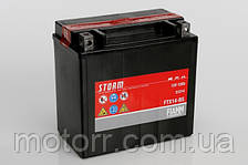 Аккумулятор Fiamm FTX14-BS