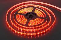 Стрічка LED 3528, 12V / 5 метрів, в силіконі. Червоний
