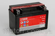 Аккумулятор Fiamm FTX9-BS
