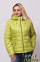 Женские весенне-осенние куртки от производителя.