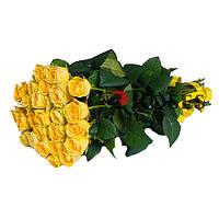 """""""Сфинкс"""" букет из 25 жёлтых роз"""