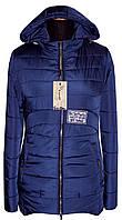 Куртка демисезонная 10-86 - синий: 42,44,46,48,50,52,54,56