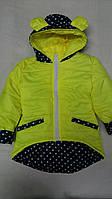 Весенняя курточка для девочки Ушки 11301