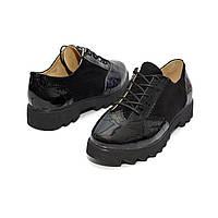 Туфли классические. Броги. Натуральная кожа. 0249, фото 1