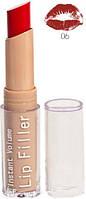Помада AISE Lip Filler №6