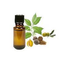 Алтайвитамины Масло мускатного ореха -  Помогает в лечении и физиопрофилактике опорно-двигательного аппарата