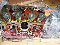 Головка блока МТЗ, Д 240, Д 243 в сборе с клапанами (Минский моторный завод, Беларусь)