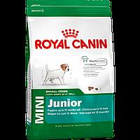 Royal Canin Mini Junior (роял канин сухой корм для щенков от 2 мес. до 10 мес.) 2кг
