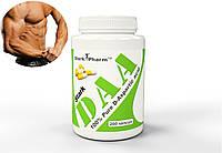 Stark DAA Mega caps 500 mg 120 caps (D-аспарагиновая кислота тестостерон бустер)