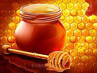 Мёд разных сортов высокого качества