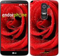 "Чехол на LG K8 K350E Красная роза ""529c-297"""