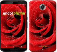 "Чехол на Motorola Nexus 6 Красная роза ""529c-67"""