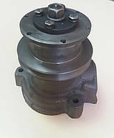 Водяной насос (помпа) МТЗ (Д-240)