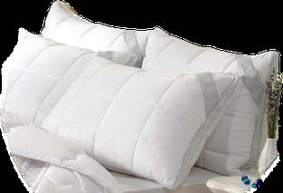 Подушка зима-літо з термовставками 50*70 ARIA
