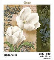 Схема Золотая подкова ЗПК-019 Тюльпаны