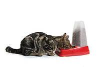 Кормушка Savic Gourmet Store (Гурме) автоматическая для собак и котов, пластик, 1.5 л