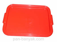 Поднос 44,5х32 см пластик Гемопласт