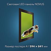 Световая LED-панель NOVUS А1