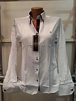 Рубашка женская с длинным рукавом Th 85 белого цвета