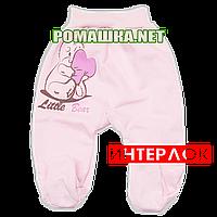 Ползунки (штанишки) на широкой резинке р. 62 демисезонные ткань ИНТЕРЛОК 100% хлопок ТМ Алекс 3165 Розовый1