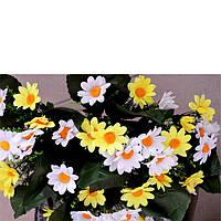 Букет Ромашка бело желтая, фото 1