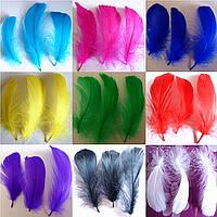 Перо гуся цветное, окрашенное , длинна 17-20см