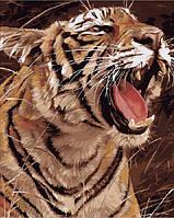 Картина по номерам Mariposa Рычащий тигр (MR-Q1974) 40 х 50 см