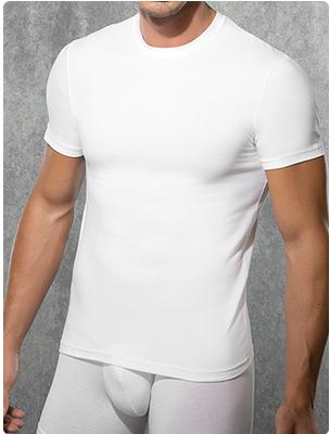 Мужская футболка Doreanse 2550 белый