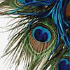 Натуральное перо павлина 25-30см 1шт