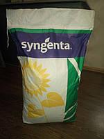 Семена подсолнечника гибрид, посевной материал. Syngenta, Сингента, Монсанто, Лімагрейн.