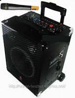 Микрофон, Радиомикрофон AMC Veini 888-1 Микрофонная радиосистема колонка