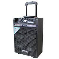 Колонка на акумуляторе DP-142 акустика