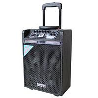Колонка на аккумуляторе DP-142 комбик с микрофоном