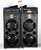 Колонки Акустика 2329 с радиомикрофонами в комплекте