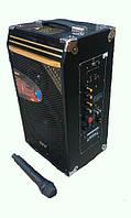 Комбо система калонка на аккумуляторе Y-7, фото 1