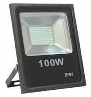 Прожектор EVRO LIGHT EV-100-01 100W SMD 95-265V 6400K SanAn 8000Lm SMD