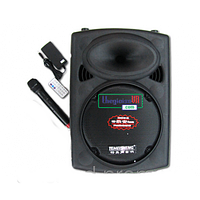 Комбо система на аккумуляторі DP-131, фото 1
