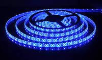 LED  лента 3528 B 60 12V без силикона, фото 1
