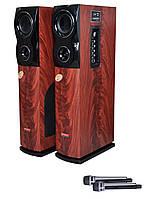 Активная акустика Пара. Акустическая система DP-111 140ват