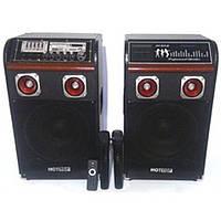 Активная акустика BIG-12 с микрофонами