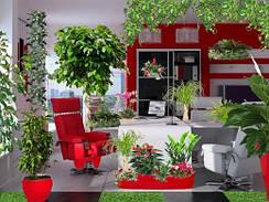 Озеленение живыми растениями.