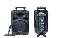 Профессиональная активная акустическая комбо система 107