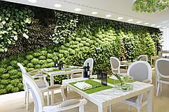 """Озеленение ресторана, кафе, бара """"под ключ""""."""