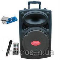 Портативная акустика с микрофоном В12 USB/Bluetooth/FM
