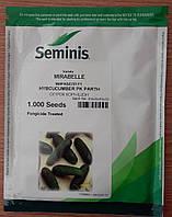 Семена огурца МИРАБЕЛЛ F1 (Mirabelle F1). Упаковка 1 000 семян. Производитель Seminis.