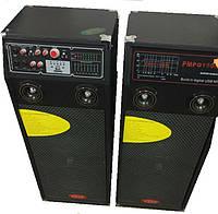 Акустика 300ват с микрофонами Т-7064, фото 1