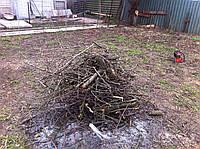 Уборка участка, расчистка участков в Киеве,вырубка кустарников